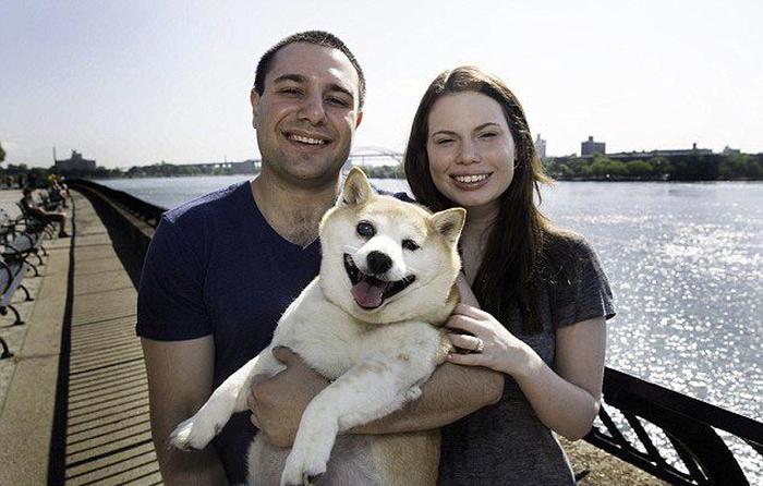 Корица - самая счастливая собака в мире (9 фото)