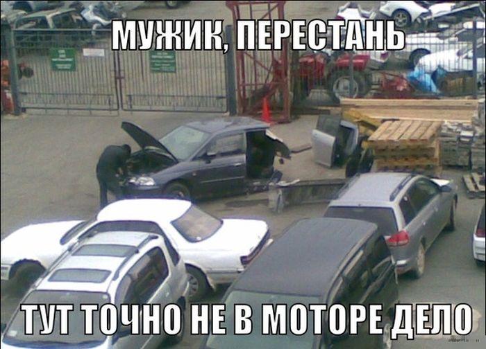 http://trinixy.ru/pics5/20150605/podborka_87.jpg
