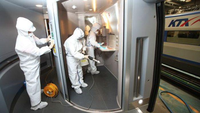 87 человек из Южной Кореи заразились вирусом MERS (4 фото)