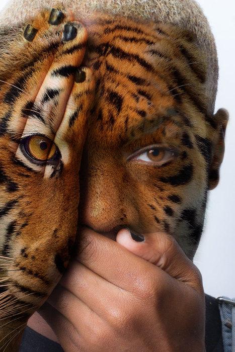 Интересный фотопроект, посвященный животным в неволе (15 фото)