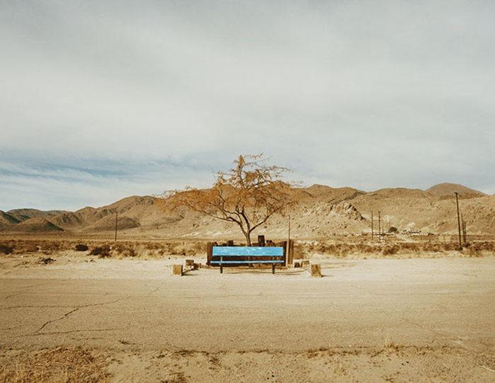 Жители американской пустыни в фотопроекте Памелы Литтки (20 фото)