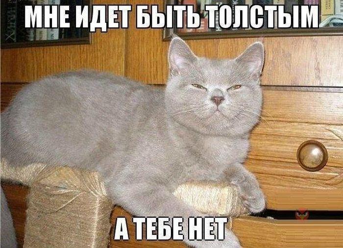 podborka_11.jpg