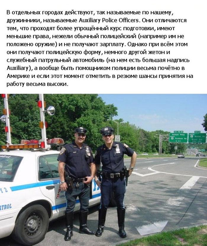 Все, что вы хотели знать о полиции США (21 фото)