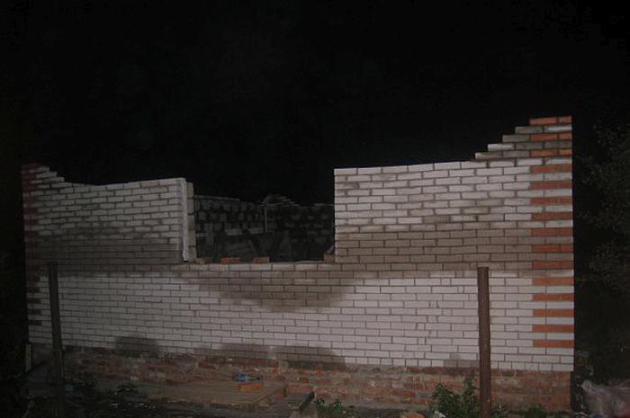 Строительство дома с грустным финалом (53 фото)