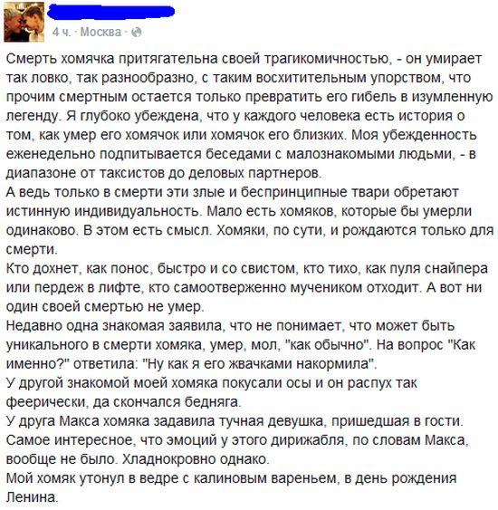 Смерть хомячков (5 скриншотов)