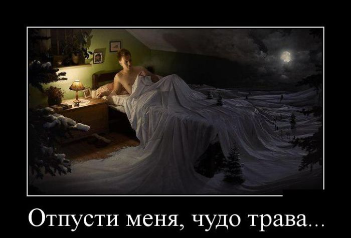 http://cdn.trinixy.ru/pics5/20150703/demotivatory_19.jpg