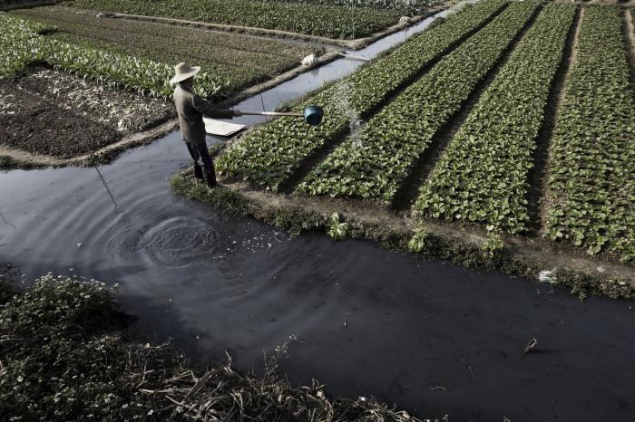 Чем Китаю приходится платить за бурный экономический рост (29 фото)