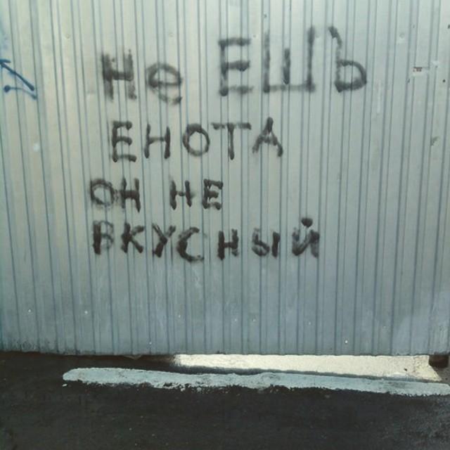 Правдивые надписи на наших стенах и заборах (35 фото)
