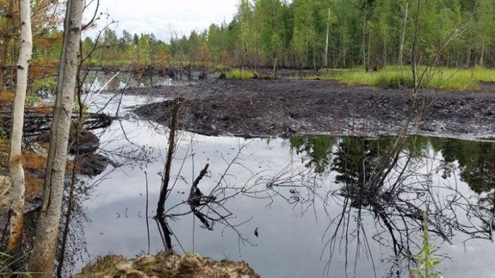 В Нижневартовске обнаружены разливы нефти (9 фото)