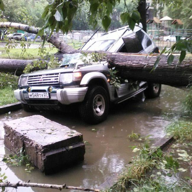 Хабаровск пострадал от мощного циклона, принесшего ураган (20 фото)