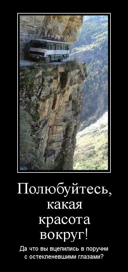 http://trinixy.ru/pics5/20150717/demotivatory_15.jpg