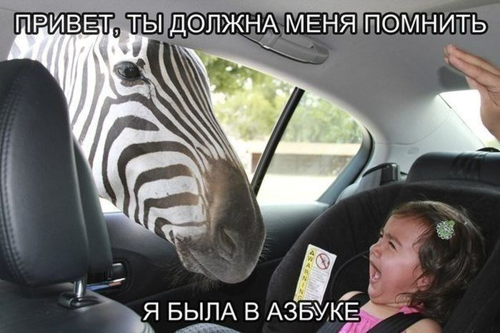 http://trinixy.ru/pics5/20150717/podborka_77.jpg