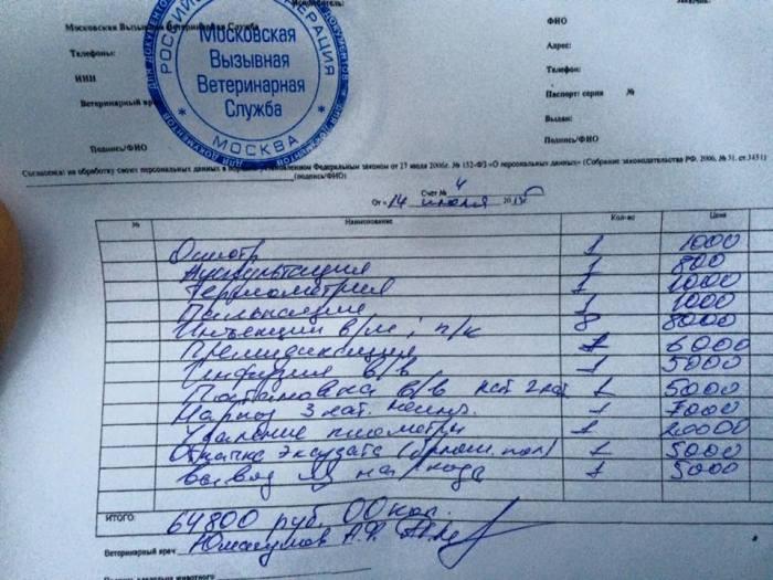 Развод в одной из московских ветклиник (2 фото)