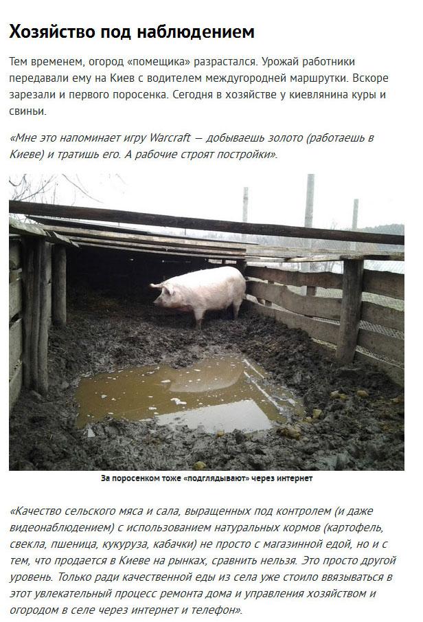 Виртуальное управление реальной фермой (14 фото)