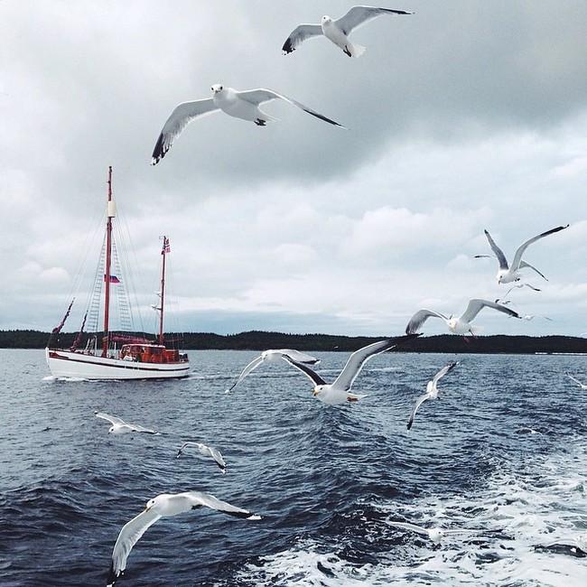 Соловецкие острова на фото в Instagram (32 фото)