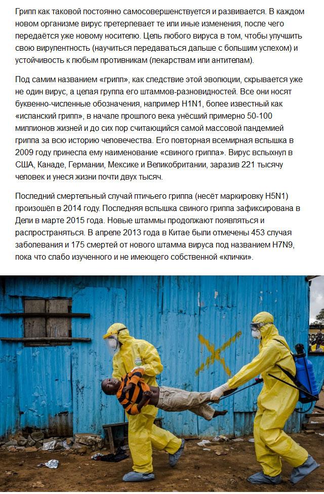 Новые вирусы XXI века (8 фото)