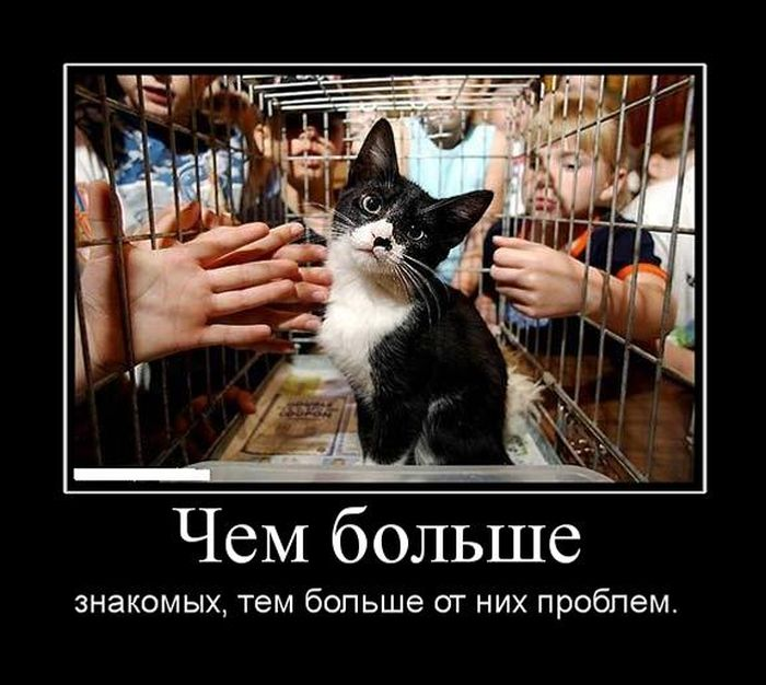 http://trinixy.ru/pics5/20150724/demotivatory_07.jpg