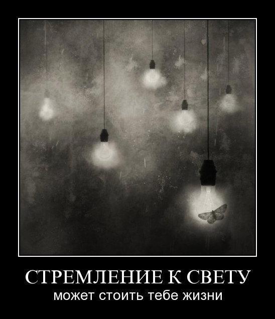 http://trinixy.ru/pics5/20150724/demotivatory_19.jpg