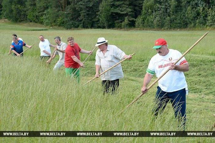 Жерар Депардье и Александр Лукашенко вместе накосили сена (6 фото)