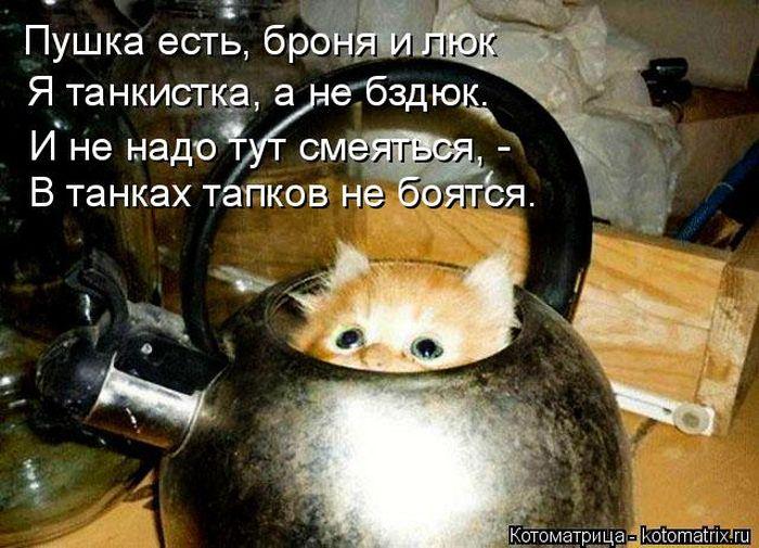 http://cdn.trinixy.ru/pics5/20150724/kotomatrix_49.jpg