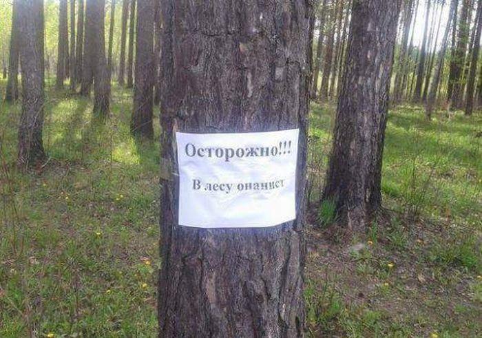 http://trinixy.ru/pics5/20150724/podborka_36.jpg