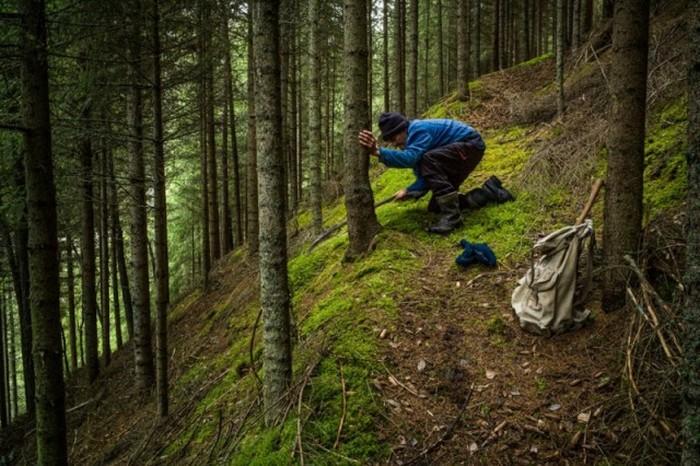 Жизнь норвежского лесного человека (30 фото)