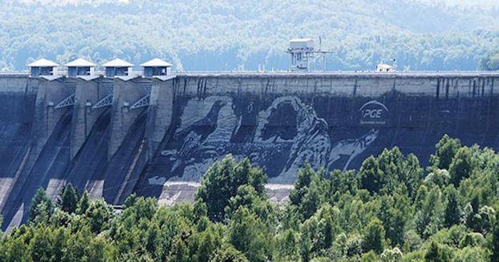 На польской плотине озера Солина появились гигантские изображения животных (6 фото)