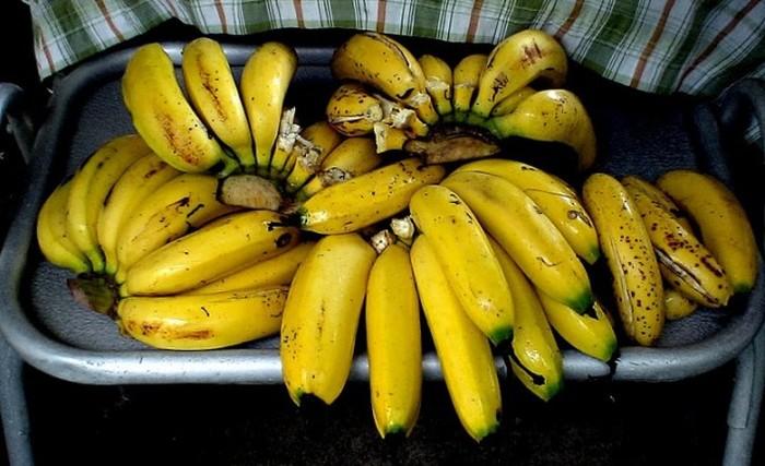 Бананы под угрозой исчезновения (8 фото)