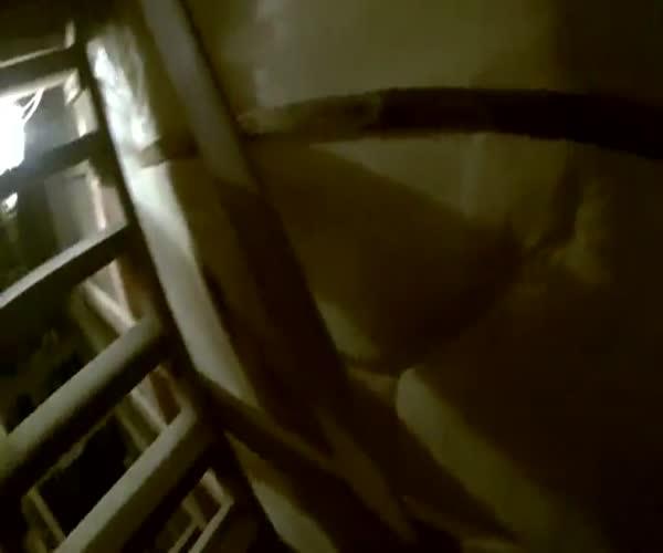 Руферы покорили шпиль Петропавловской крепости