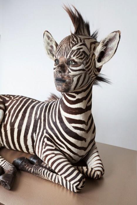 Чучела животных с человеческими лицами от Кейт Кларк (30 фото)
