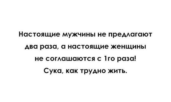 http://trinixy.ru/pics5/20150731/podborka_17.jpg