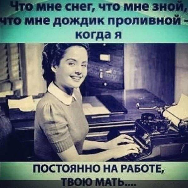 http://trinixy.ru/pics5/20150731/podborka_71.jpg