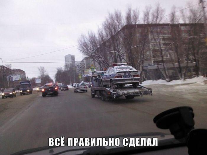 http://trinixy.ru/pics5/20150731/podborka_81.jpg