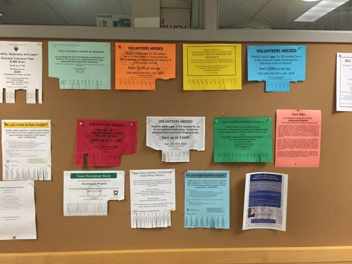 Какие исследования проводятся в Йельском университете (4 фото)