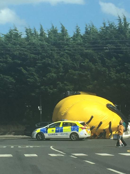 В Дублине 12-метровый миньон заблокировал трассу (7 фото)