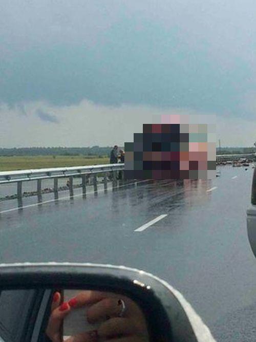 В Хабаровском крае столкнулись рейсовые автобусы. 16 человек погибли, более 60 получили ранения (3 фото)