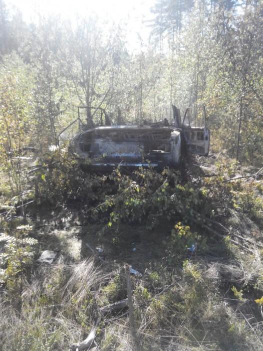 Лесная находка грибников (8 фото)