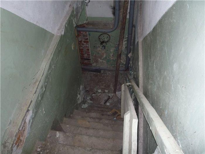 Обыватели московских подвалов (3 фото)
