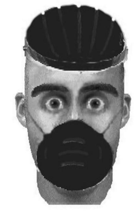 Нелепые фотороботы преступников (15 картинок)