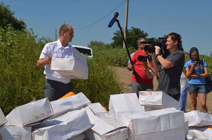 В Белгородской области уничтожили 10 тонн «санкционного» сыра (9 фото)