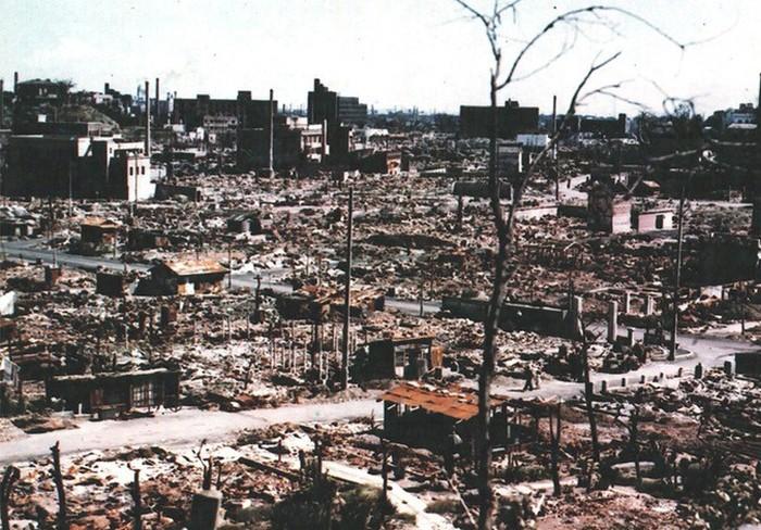 Деревья Хиросимы, сумевшие пережить ядерный взрыв (9 фото)