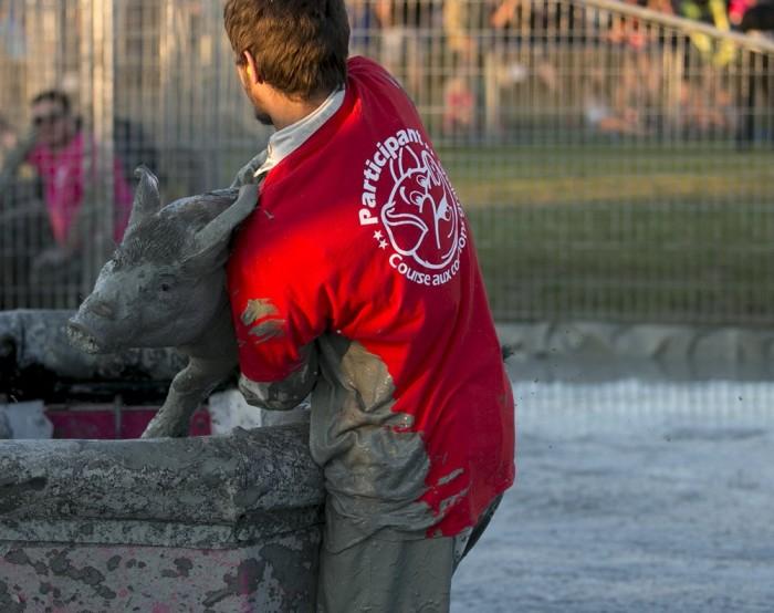 Забавный канадский фестиваль Festival du Cochon (11 фото)