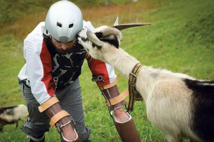 Британский дизайнер провел 3 дня со стадом горных коз (7 фото)