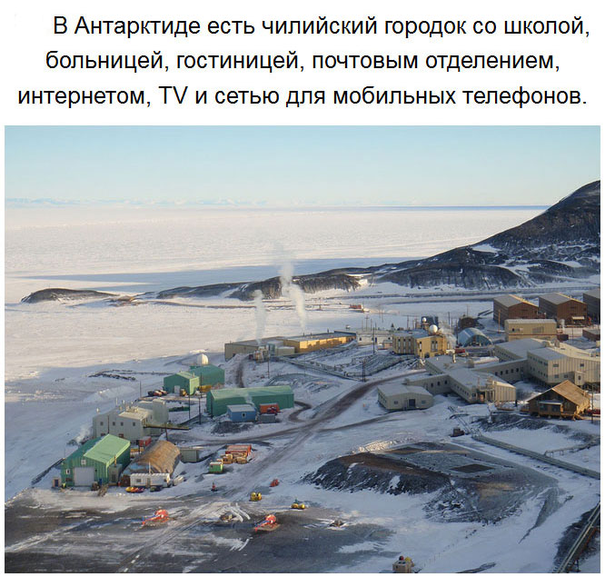 Удивительные факты об Антарктиде. Часть 2 (27 фото)
