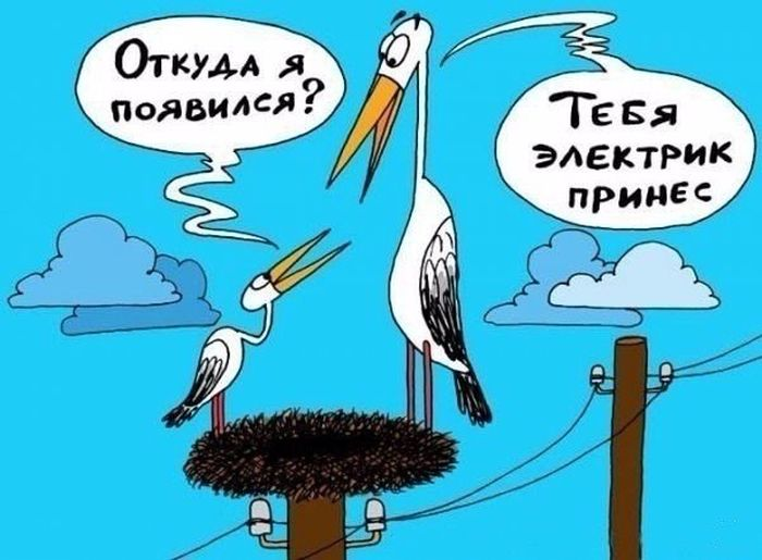 http://trinixy.ru/pics5/20150828/podborka_17.jpg
