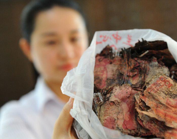 Спрятанные китайской семьей 16 000 долларов сгнили в земле в течение 4-х лет (3 фото)