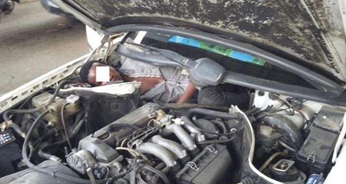 Пытаясь попасть в Европу, мигранты спрятались под капотом и за задним сиденьем авто (3 фото)