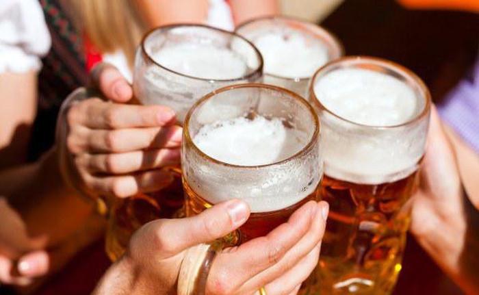 Польза пива для нашего организма (15 фото)