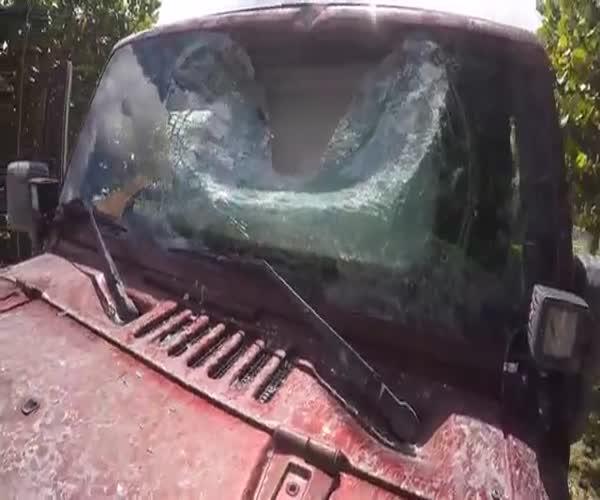 Последствия селфи за рулем