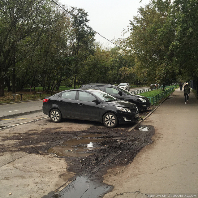 Как бороться с автомобилистами, уничтожающими газоны (6 фото)